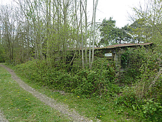 abandoned-derelict-sawmill-cooksbridge-lewes-6.jpg