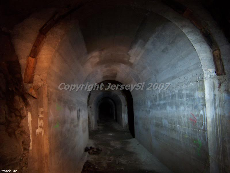 back_tunnel2.jpg