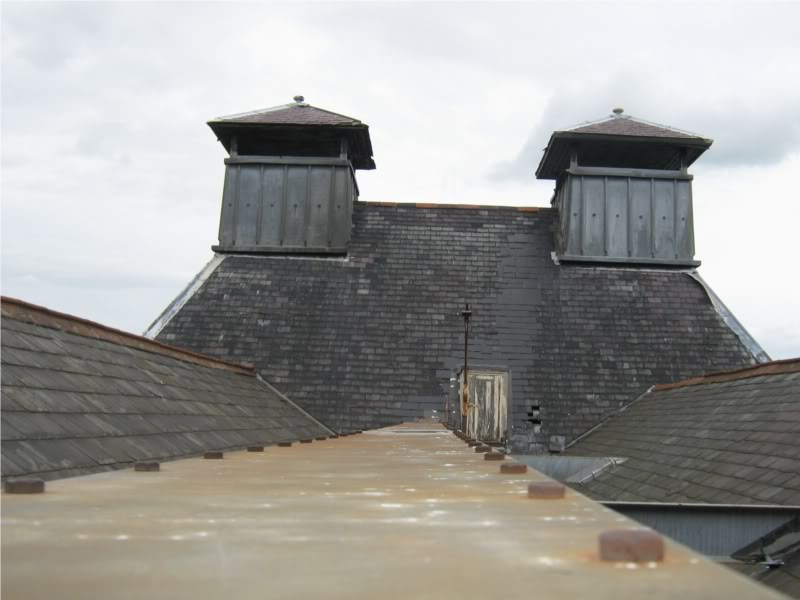 Roofview.jpg