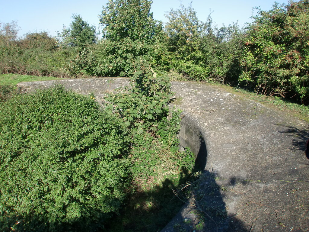 emplacement-curve.jpg